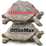 Depot Max tortoise