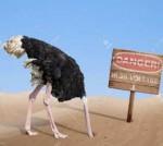 xerox ostrich